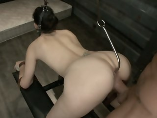 Bobbi Starr gets her holes destroyed hardcore bdsm xxxvideo