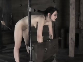 cane the bitch  hd xxxvideo